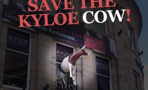 Edinburgh Street Protest Staged to 'Save Kyloe Cow'