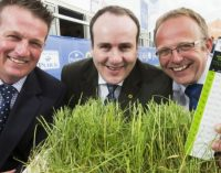 QMS Head Highlights Sustainability Credentials of Scottish Livestock Production