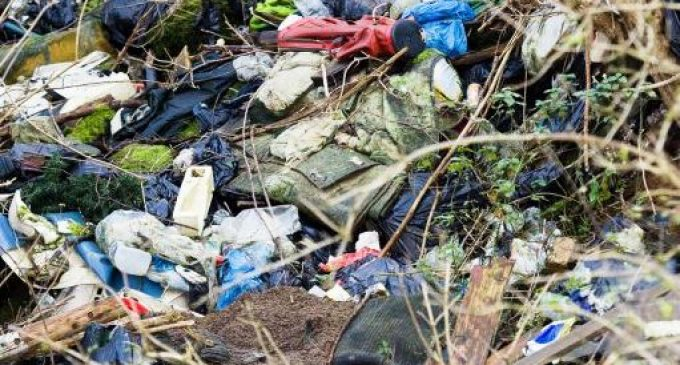 Zero Waste Scotland Launches New Litter-Prevention Funds