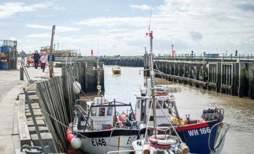 Levy Restaurants UK Prioritises Sustainable Fish