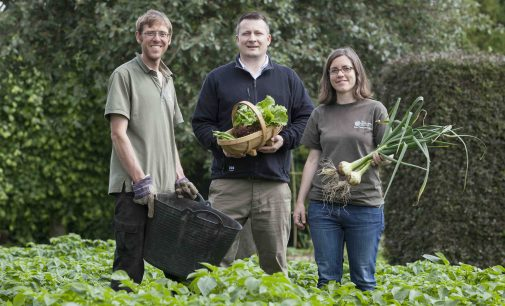 The Royal Botanic Garden Edinburgh Appoints Market Gardener