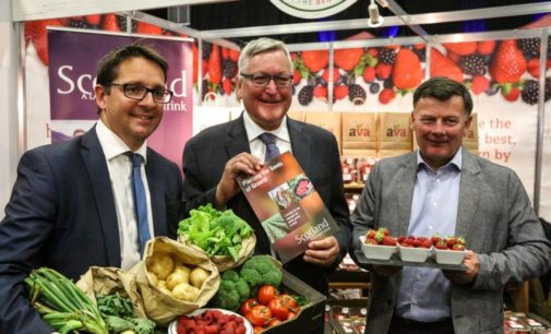 New Growth Strategy Announced for Fruit, Vegetable and Potato Sector